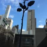 Rose I.