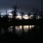 Daybreak running