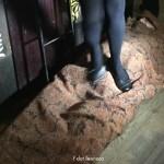 Human Carpet