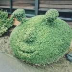 #70: Topiary