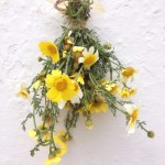 Easter Posy