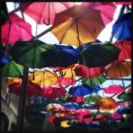 #71: Umbrella