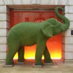 #167 – Green Elephant