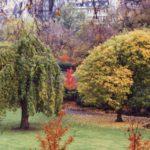 267 – Gardens