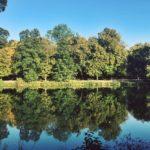 #271: Łazienki Park
