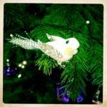 #351: Bird ornament
