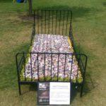 #366 – Flower Bed