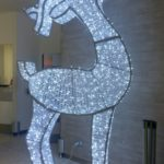 #347 – Reindeer